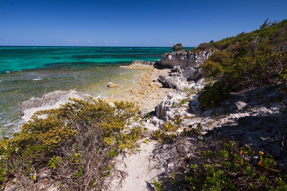 Rugged Beauty of Eleuthera Bahamas