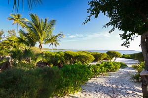 winding_bay_eleuthera_4014.jpg